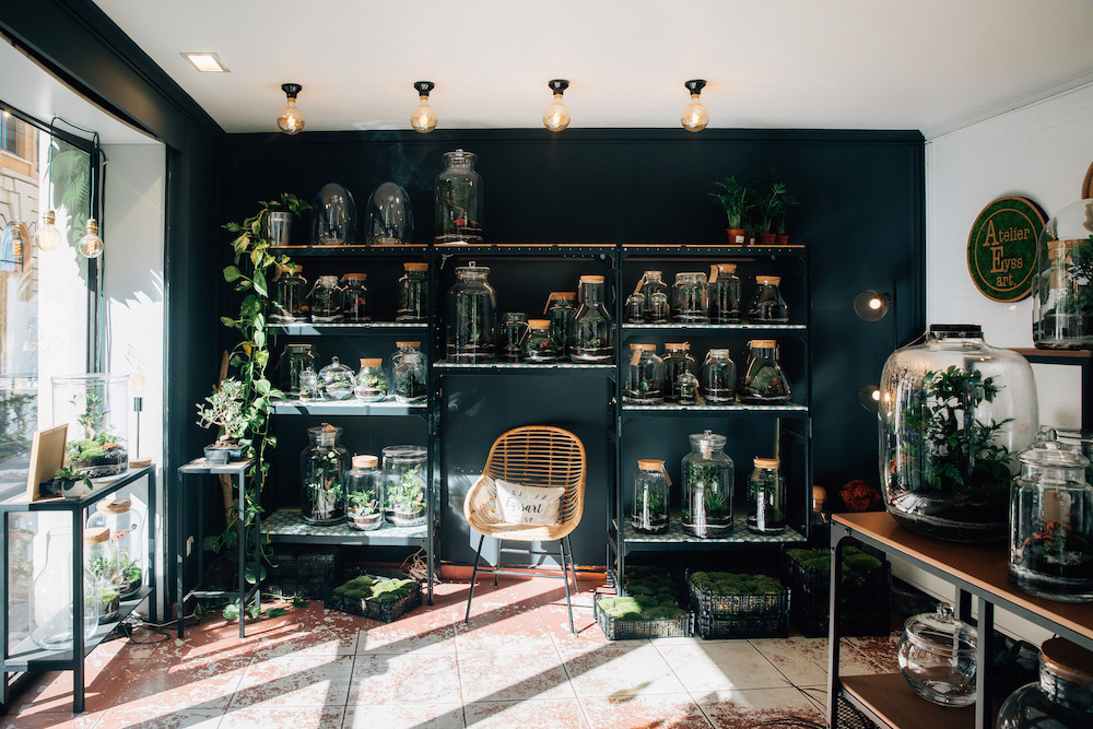La boutique de terrarium de Pierre, fondateur de l'Atelier Eyssart