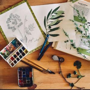 Le matériel d'Anna pour ses aquarelles de plantes de balade