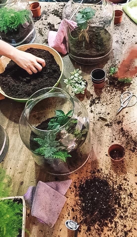 Faire un terrarium avec Pierre de l'Atelier Eyssart #Toulousecreative