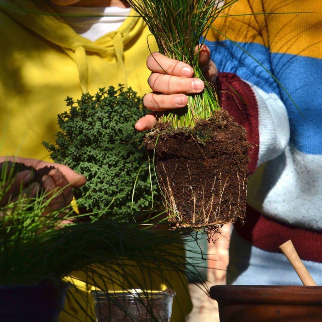 Atelier rempotage avec le collectif Sous les pavés la plante