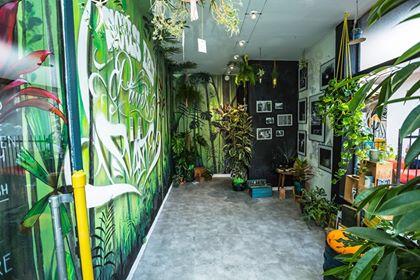 L'exposition du collectif Sous les pavés la plante à l'espace Passerelle Neegreneys à Toulouse