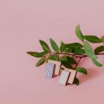 FAIRE : Créez avec des chutes de bois